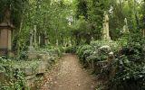 Sedm nejstrašidelnějších míst světa: Patří sem děsivé sanatorium i les sebevrahů