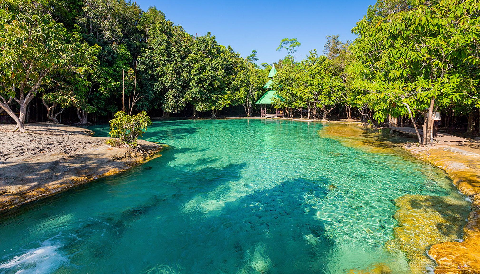 Trekking džunglí z Krabi