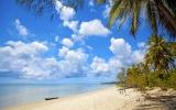 Mafia: Podvodní dobrodružství mezi korály sem láká nejvíce