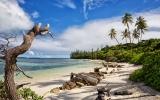 Nová Kaledonie: Z drsné trestanecké kolonie se staly ostrovy věčného jara