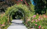 Pět nejkouzelnějších botanických zahrad: Poznejte jedovaté krásky a Monetovu zahradu