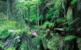 Fascinující Nový Zéland: Poznejte místní