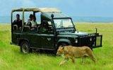 Jak vypadá pravé africké safari? Nejdřív adrenalin a pak luxus místních hotelů
