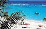 Karibský ráj Barbados láká luxusním ubytováním i koupáním s mořskými želvami