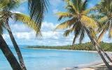 Martinik: Ostrov plný květin a prý i nejkvalitnějšího rumu na světě
