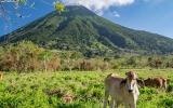 Tajemství sopek z jezera Nicaragua: Kdo u nich zanechal 2000 magických kamenů?