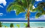 Zapomenuté perly Tichomoří: Čarokrásné atoly a neuvěřitelně přátelští lidé