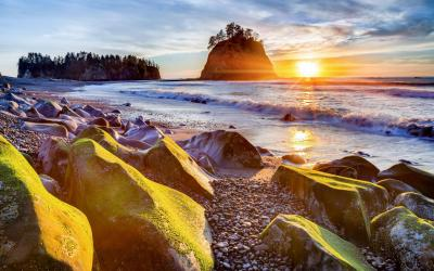Dramatické pobřeží Pacifiku nabizí tisícovky ptáků i táhnoucí velryby  | Pacific Rim NP