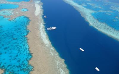 Australia | Cairns_Great Barrier Reef