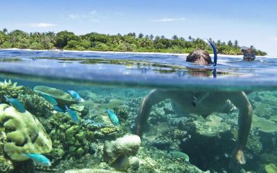 VOMO-Ocean-Play-Snorkeling