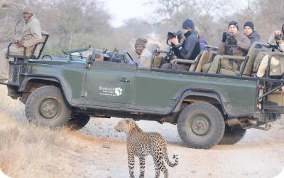 Hilltop_Lodge, Timbavati GR | Kruger NP