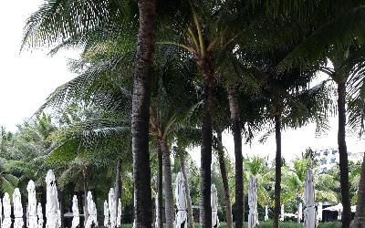 Salinda Phu Quoc
