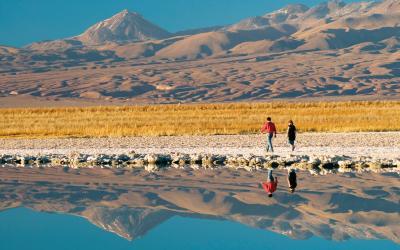 Atacama Salar | Chile