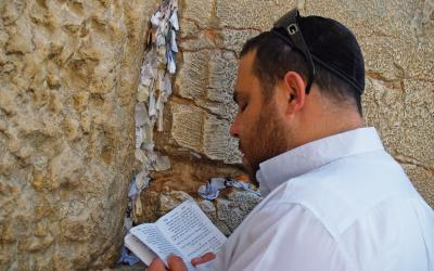 Zed Narku | Izrael