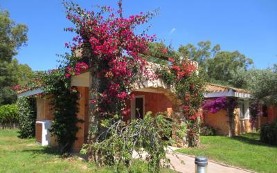 bungalov v zahradě