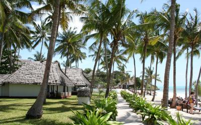 Pokoje Junior Suite |  Karafuu Beach Resort & SPA