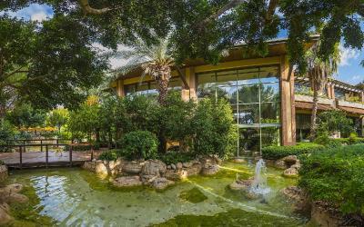 zahrada v hotelu