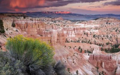 Magická Hoodoo - doruda zbarvené věže rezervace Bryce Canyon  | Bryce Canyon NP