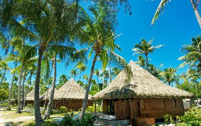 RGI Kia ora Room_Beach Bungalow (2).gallery-image.1