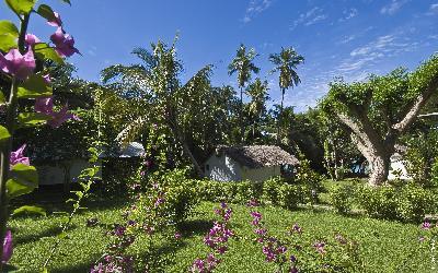 485 Le Jardin Maore