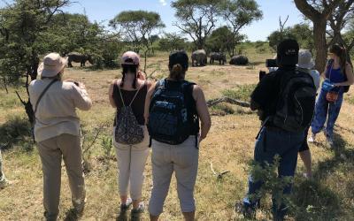 stopování nosorožců   Matobo Hills NP