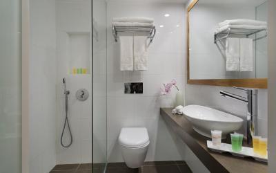 Oasis Dead Sea - Standard Room - koupelna