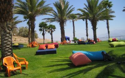 Prima Music Hotel - zahrada u bazénu