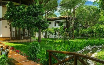 bungalovy v zahradě