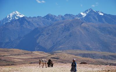 Peru | Andy