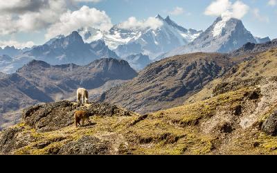 Argentína | Cordillera de los Andes