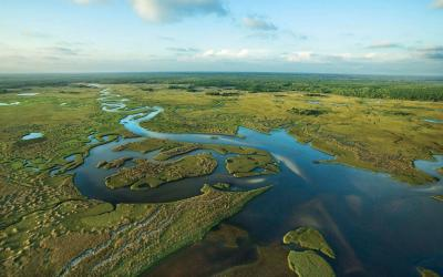 USA | Everglades NP