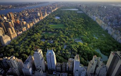 USA | New York - Central Park