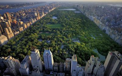 USA | New York - Central Park