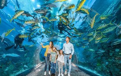 SAE | Dubaj_Aquarium