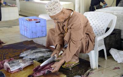Omán | Muscat_Fish Market