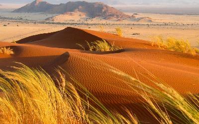 Namíbia   Kalahari Desert