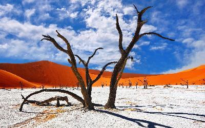 Namíbia   Sossusvlei a Deadvlei