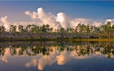 USA | Evereglades NP