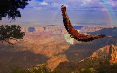 USA | Grand Canyon NP