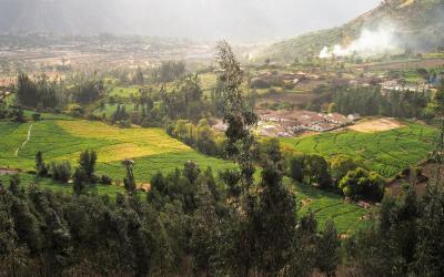 Sev. Peru (17)