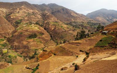 Sev. Peru (21)