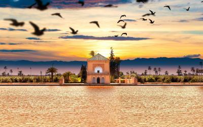 Zahrady Menara | Marrakech  | Maroko
