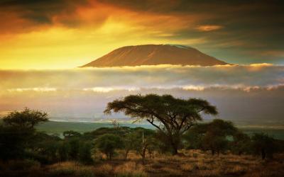 Savana v Amboseli NP, v pozadí Kilimandžáro   | Keňa