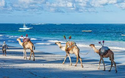 Diani Beach | Keňa